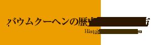 バウムクーヘンの歴史とその作り方
